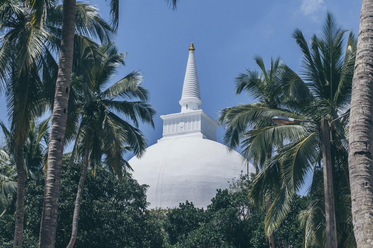 Wakacje na Sri Lance – którą opcję wybrać?